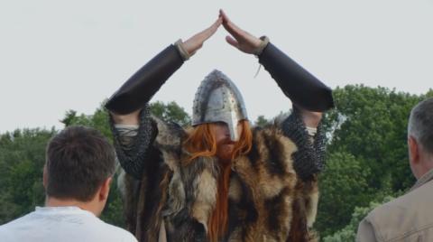 viiking-irus
