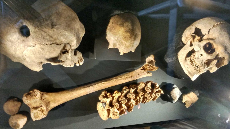 ÖÖ muuseumis: Viikingid!